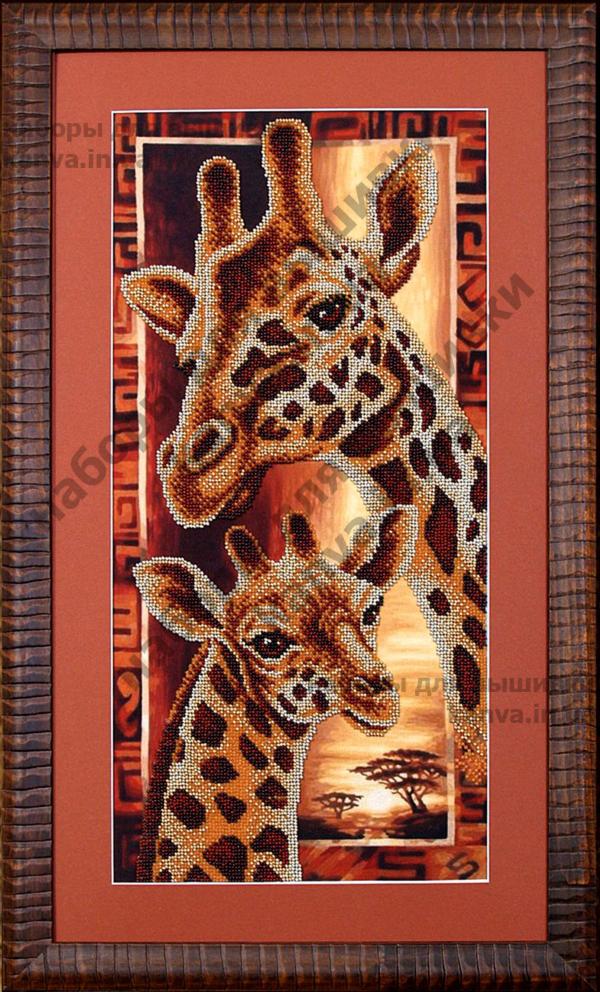 Африка: Жирафы [Б-057]