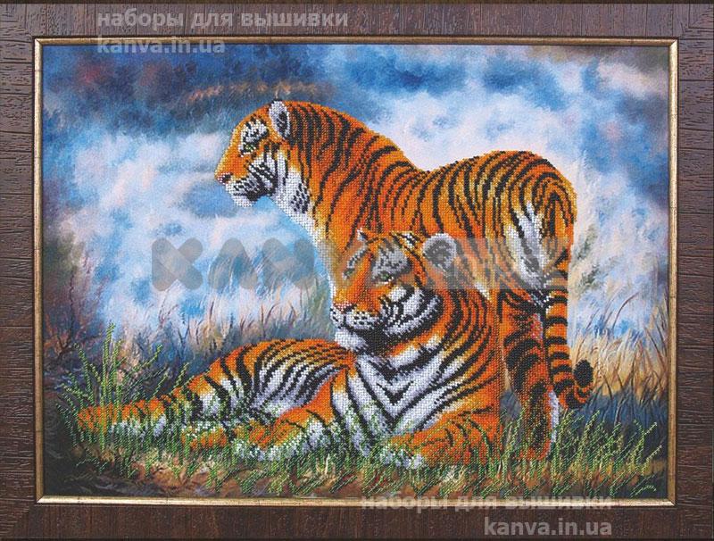 Туманное утро «Тигры»
