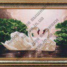 Лебединая верность [Б-056]