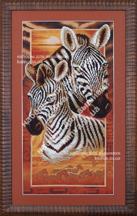 Африка: Зебры [Б-037]